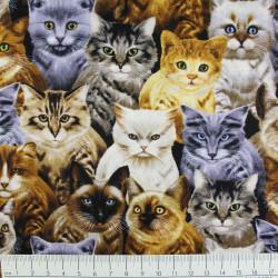 Baumwollstoff timeless treasures fabrics Katzen von Michael Searle Stoff