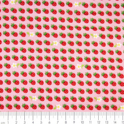 Baumwollstoff Erdbeeren Patchworkstoffe Robert Kaufman Stoffe sevenberry®