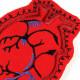 Anatomisches Herz Bügelflicken Aufnäher zum aufbügeln Flicken Organ Patch Mensch Anatomie Bügelbild rot für Erwachsenen Tattoo