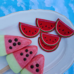 small cool melons patches for adults summery fresh iron-on appliques
