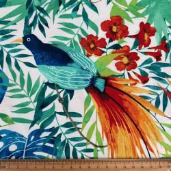 Fabrics Michael Miller Birds in a colorful garden cotton fabric