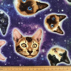 Patchwork fabric cat in space fabric timeless treasures USA